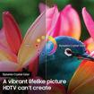 Samsung UN82RU8000FXZA Flat 82-Inch 4K 8 Series Ultra HD Smart TV with HDR