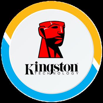 صورة الشركة كنجستون